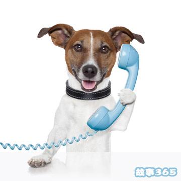 和狗狗打电话