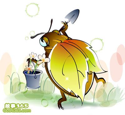害羞的小甲虫