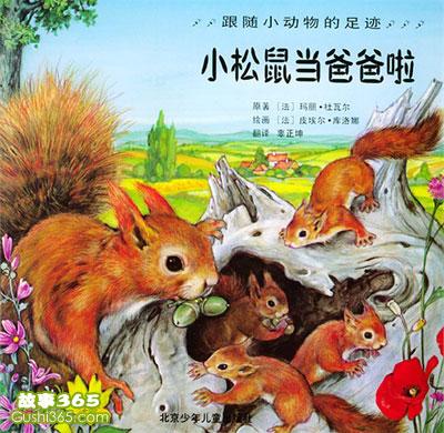 故事:小松鼠当爸爸啦