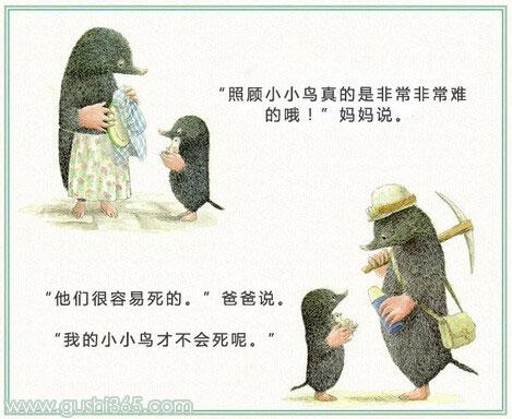 鼹鼠和小鸟