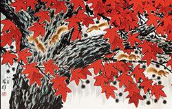 小松鼠的红地毯