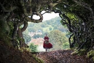 魔法森林里神秘的传说
