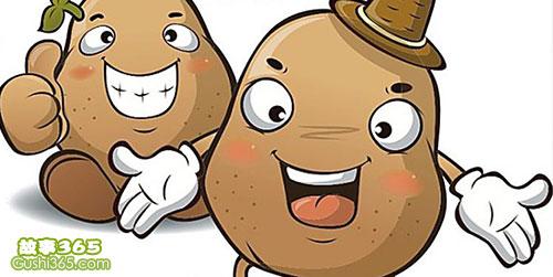 土豆妈妈和她的宝宝们
