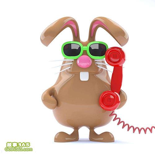 兔子打电话