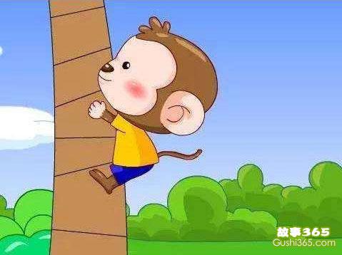 小猴子摘桃子