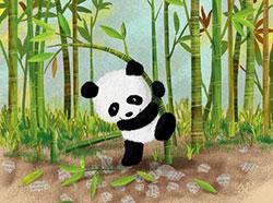 懂礼貌的小熊猫