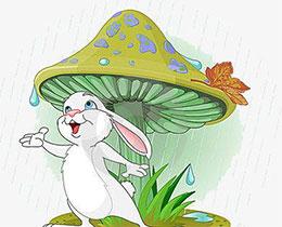 蘑菇伞下的笑声