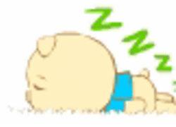想失眠的猪小小
