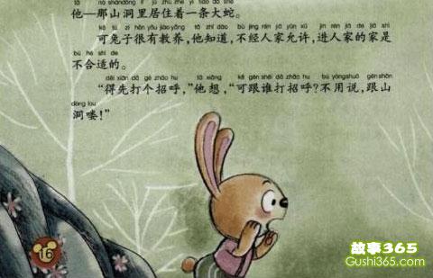有礼貌的兔子