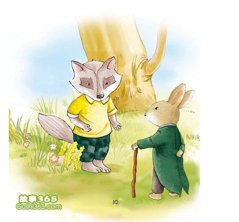 兔子坡 新人家要来了