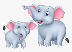 大象和小象