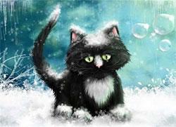 飄飄然的黑貓
