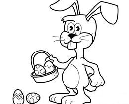 不懂裝懂的灰兔