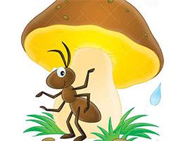 好心眼兒的小蘑菇