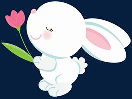 小兔子吉布寻找睡眠