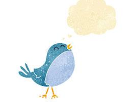 喜歡安靜也喜歡唱歌的鳥