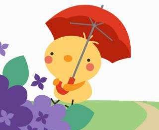 小黄鸡借伞
