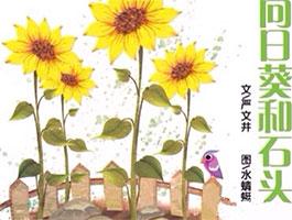 向日葵和石头
