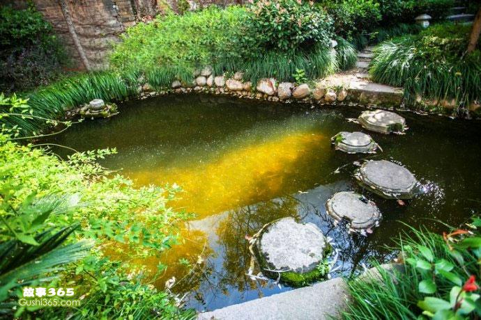 儿童童话故事阳光跌进池塘里