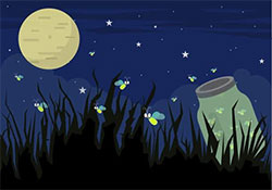 螢火蟲和小星星