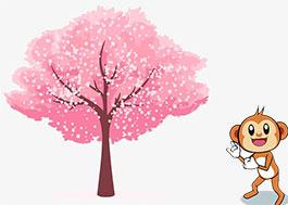 一颗樱桃的故事