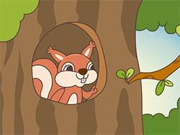 爱收藏的小松鼠