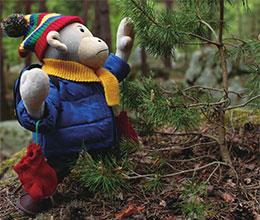 波比在树林里散步