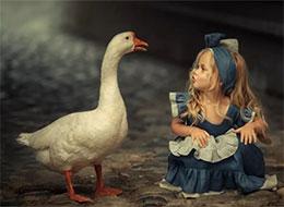 大白鹅和小姑娘