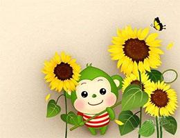 金灿灿的向日葵