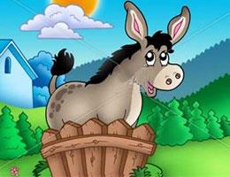 驢子的圍墻