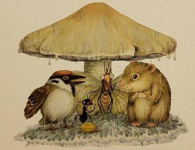一個、兩個、三個……蘑菇下躲雨