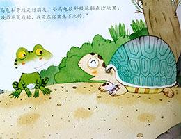小乌龟和青蛙