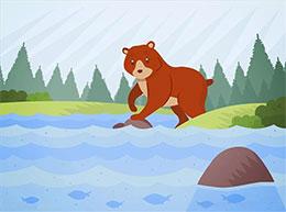 小熊捕鱼(小熊贝贝捕鱼)