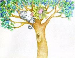 住在樹上的貓