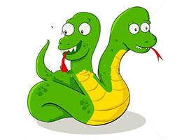双头蛇的小秘密