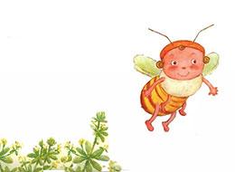 小蜜蜂赴宴