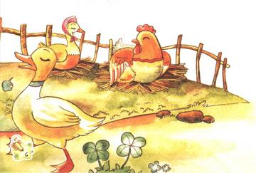鸡妈妈和小鸭子
