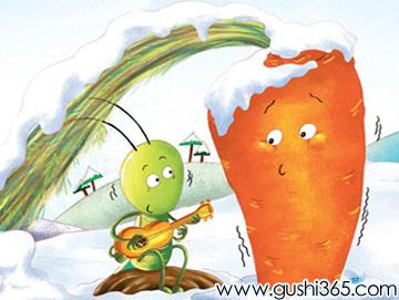 小萝卜和蟋蟀先生