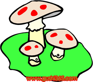 小刺猬的蘑菇伞