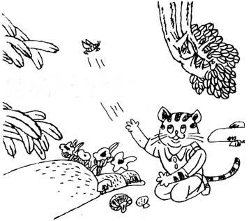 小花猫捕虫记