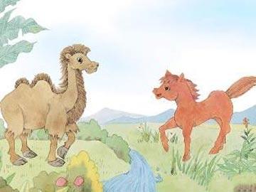 小骆驼和小红马